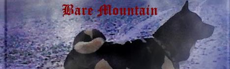 Bare Mountain bei Facebook