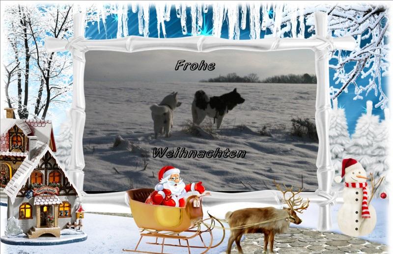 Bare Mountain Wünscht seinen Lesern ein frohes Weihnachtsfest